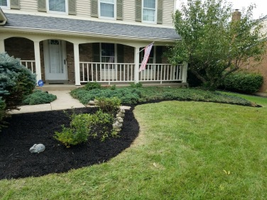 Mulched home